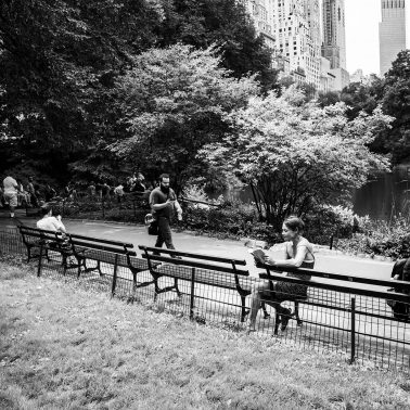 A sunny summer's day in central Park NYC. People are seen in this black and white image sitting and reading a book, or strolling through the park.
