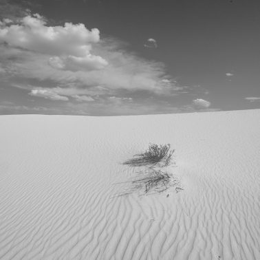 sand dune with clouds and shrub