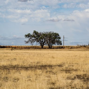 A photograph of a farmhouse on a beautifully colored afternoon taken somewhere in the Texas panhandle an hour before sunset.